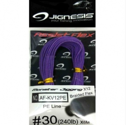 Assist Flex Jignesis AF-KV12PE Monster Jigging