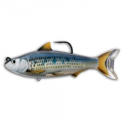 Isca Live Target Swimbait Common Shiner