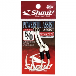 Assist Hook Shout Powerful 25-PA - 2 unidades